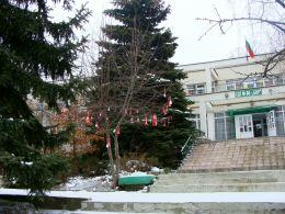 ДГ 60 Бор - София - 03 - ДГ 60 Бор - София, Витоша